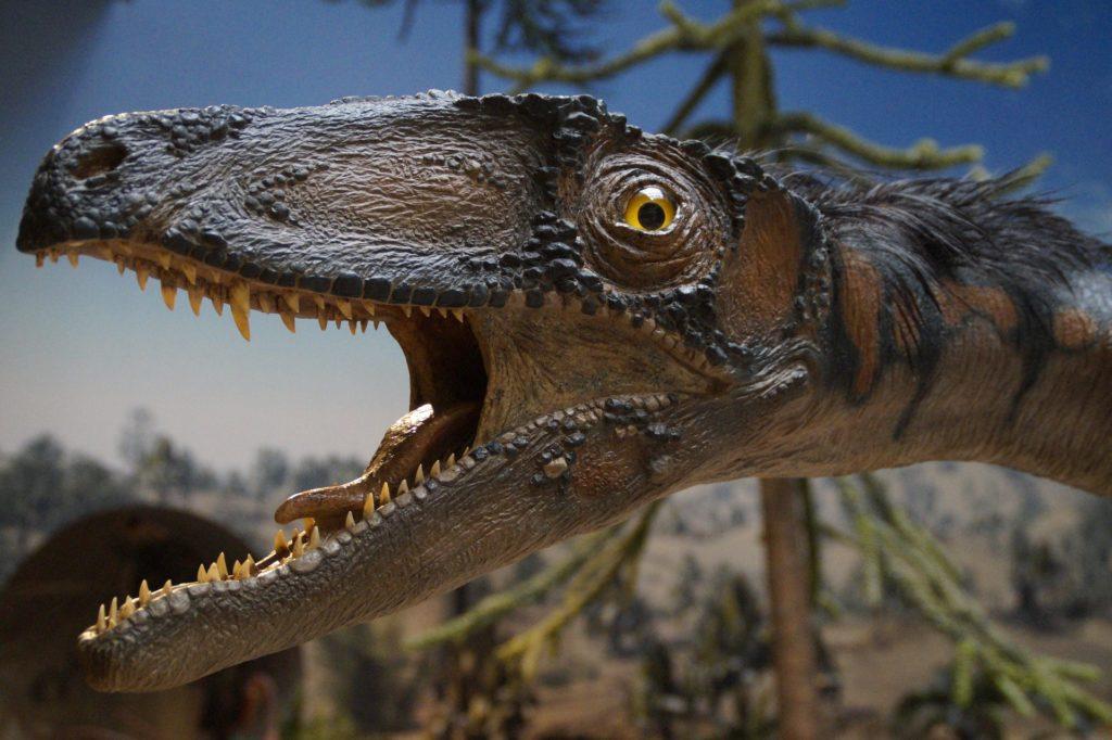 Irgendein komischer Dinosaurier guckt amüsiert, warum weiss niemand